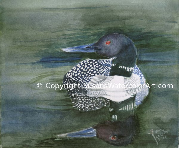 Loon Reflections